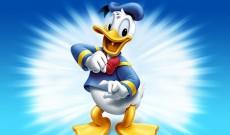 Duckforce Rises